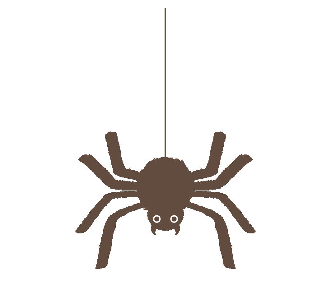 イラスト 蜘蛛